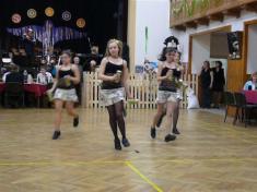 Sokolský ples 2008