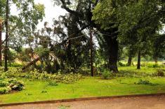 Bouře 14. 07. 2009